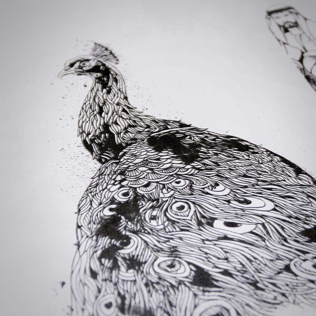 Peacock - Doodle Artwork